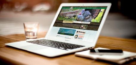web design kilmarnock company branding